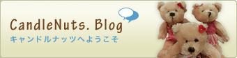 CandleNuts Blog