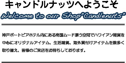"""神戸ポートピアホテル内にある""""ハワイワールド""""キャンドルナッツ 南国ムード漂う空間でハワイ関連アイテムを数多く取り揃え、皆様のご来店をAloha Smaileいっぱいでお待ちしております。enjoy your shopping!!"""