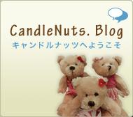 キャンドルナッツブログ